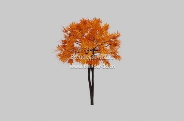 简单金色枫树